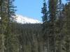 03_snow_trail